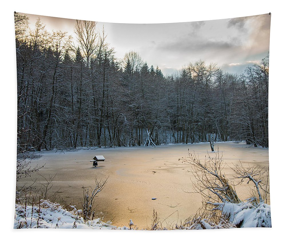 Winter Tapestry featuring the photograph Winter Landscape With Frozen Lake And Warm Evening Twilight by Matthias Hauser