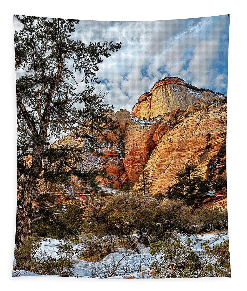 Zion National Park Tapestry featuring the photograph Winter Morning In Zion by Christopher Holmes