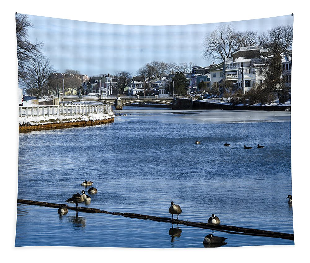 Geese Tapestry featuring the photograph Winter Scene Jersey Shore Town by Maureen E Ritter