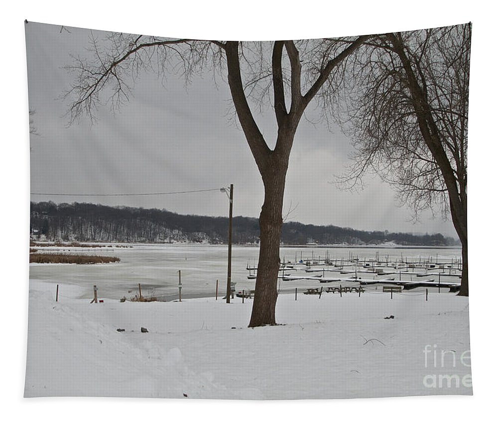 Winter Tapestry featuring the photograph Winter by William Norton