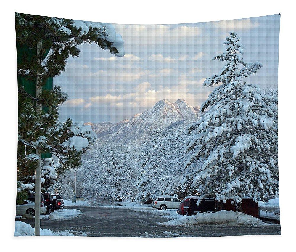 Salt Lake City Tapestry featuring the photograph Winter Wonderland In Murray Utah by Tikvah's Hope