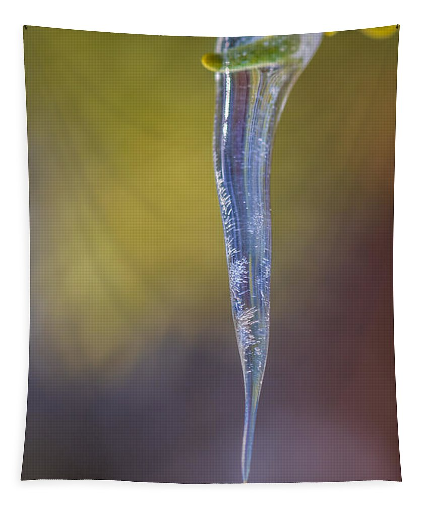 Icicle Tapestry featuring the photograph Winter's Touch by Mitch Shindelbower