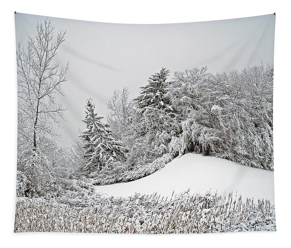 Landscape Tapestry featuring the photograph Wintery Fun by Aimee L Maher ALM GALLERY