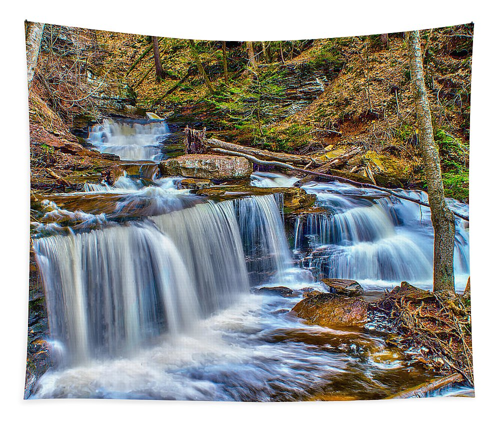 Waterfall Tapestry featuring the photograph Wateralls In The Woods by Nick Zelinsky