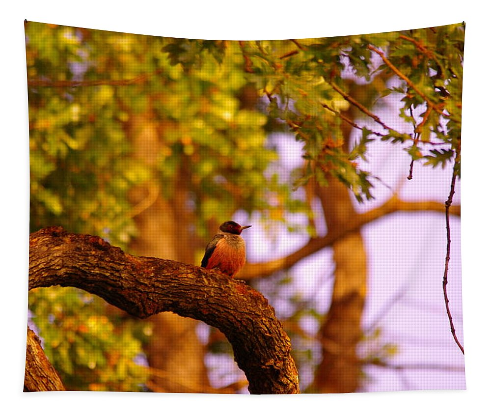 Birds Tapestry featuring the photograph Woodpeckers Of Fort Simcoe by Jeff Swan