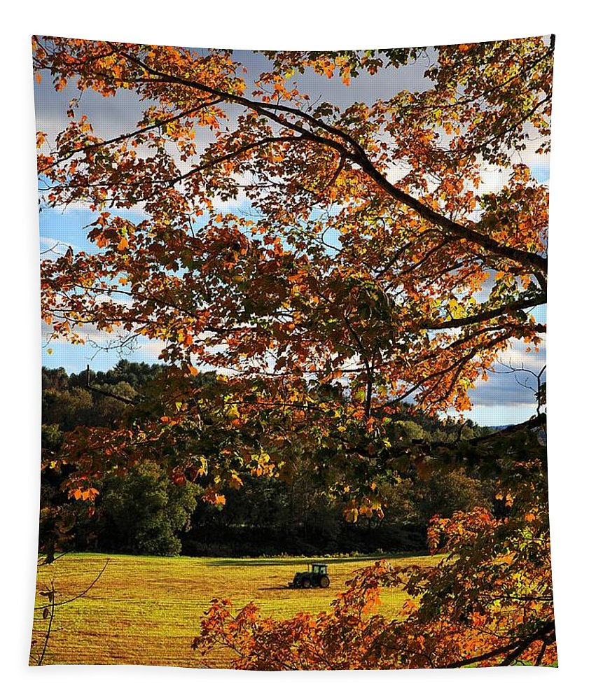 Vermont Tapestry featuring the photograph Woodstock Vermont by Edward Fielding