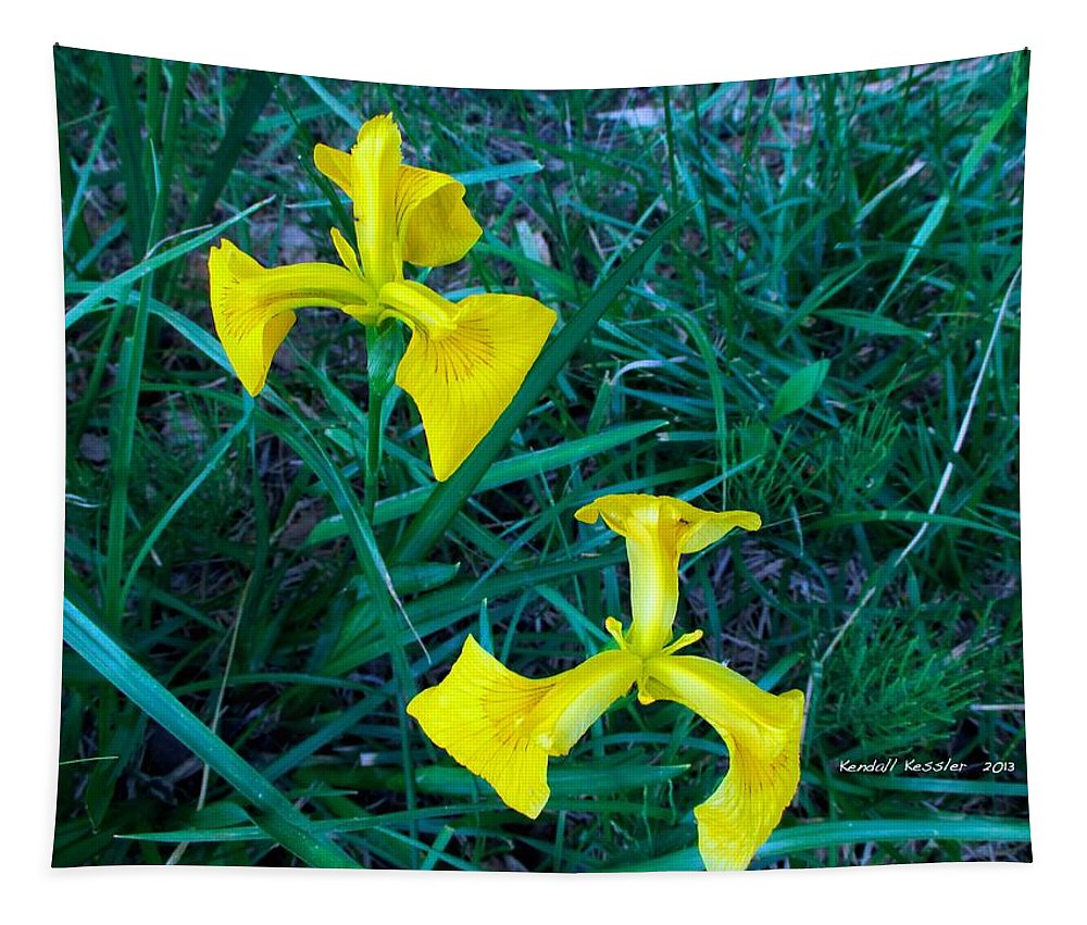 Yellow Tapestry featuring the photograph Yellow Flag Iris by Kendall Kessler