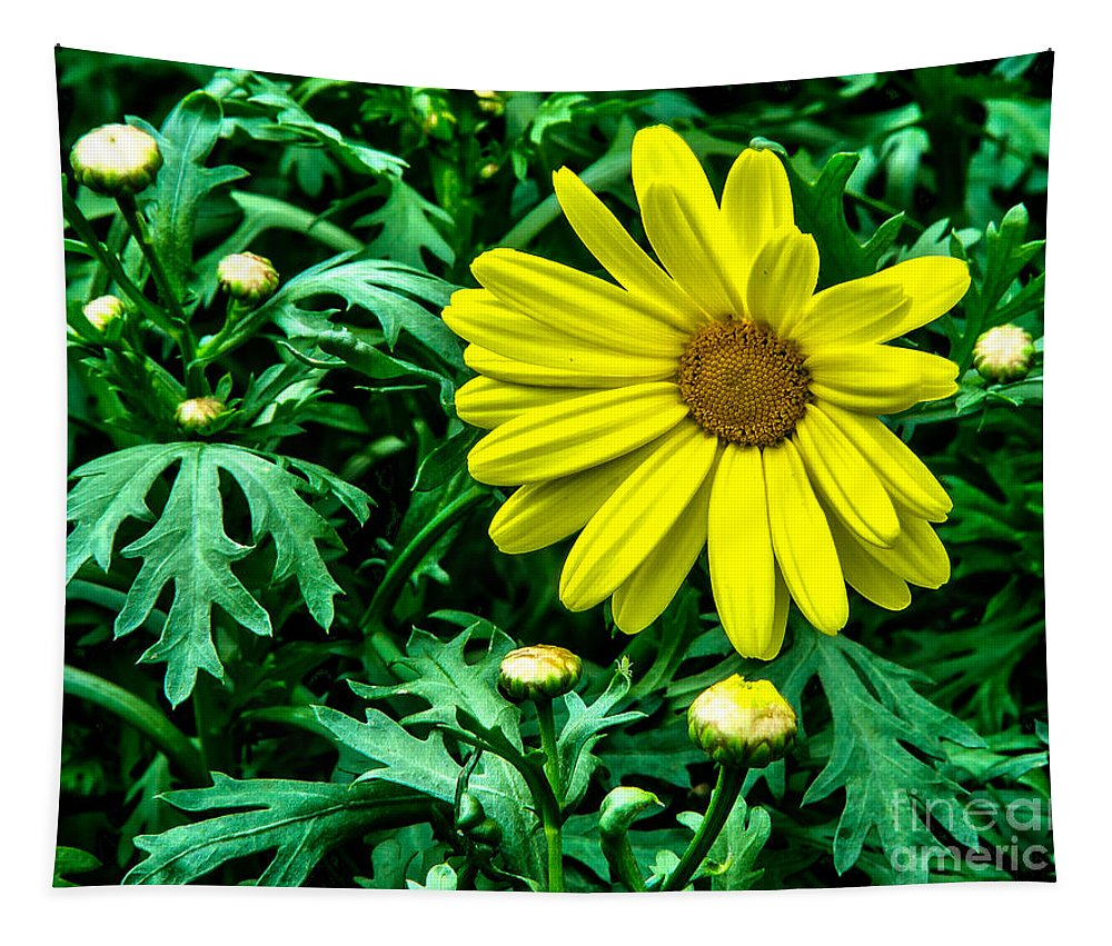 Beautiful Tapestry featuring the photograph Yellow Flower Of Spring by Nick Zelinsky