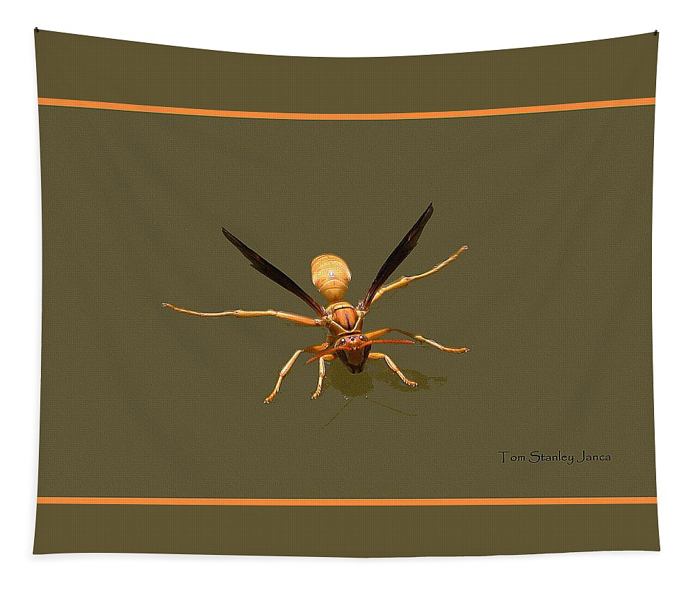 Yellow Jacket Tapestry featuring the photograph Yellow Jacket Wasp by Tom Janca
