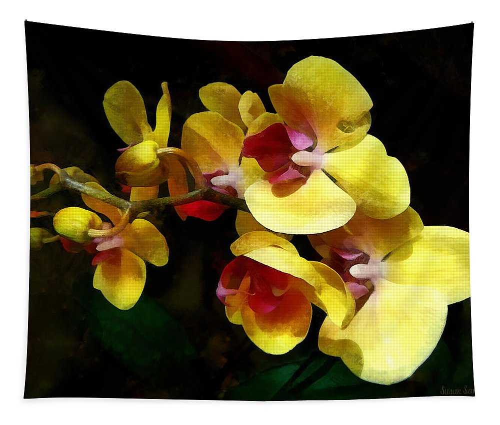 Orchid Tapestry featuring the photograph Yellow Orchids Shadow And Light by Susan Savad