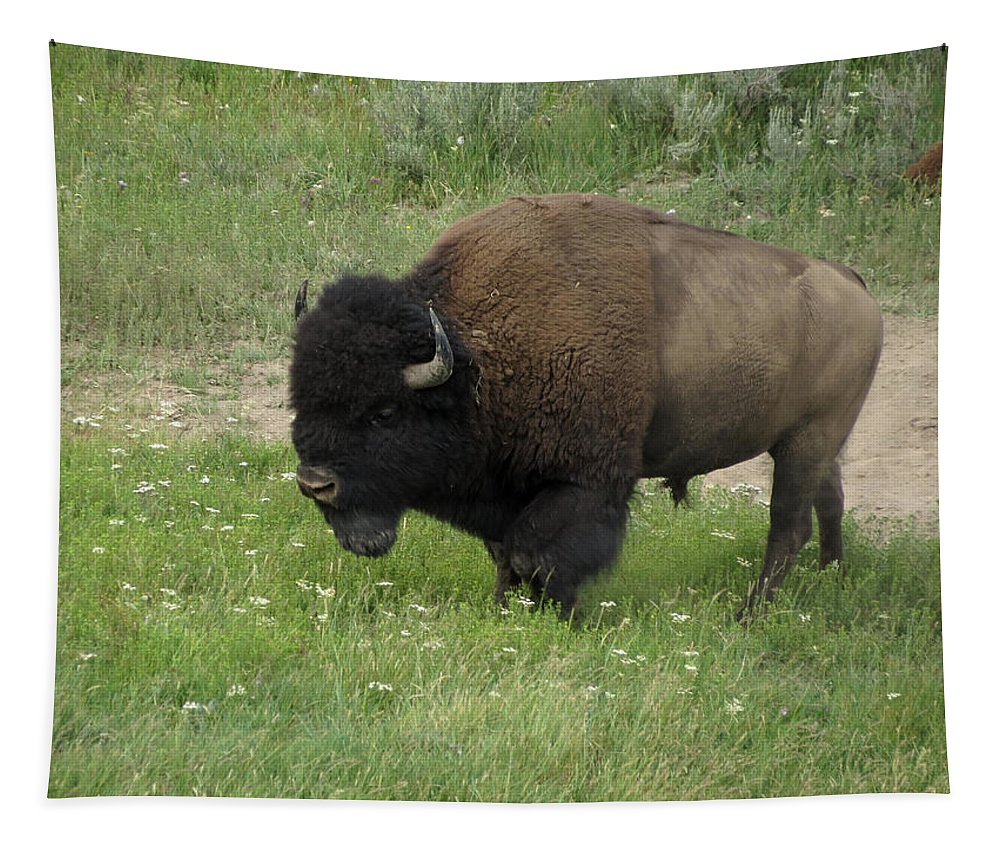 Bison Tapestry featuring the photograph Yellowstone Bison by Laurel Powell