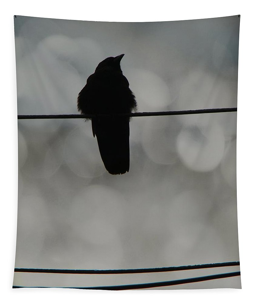 Bokeh Tapestry featuring the photograph Monochrome Young Crow by Gothicrow Images