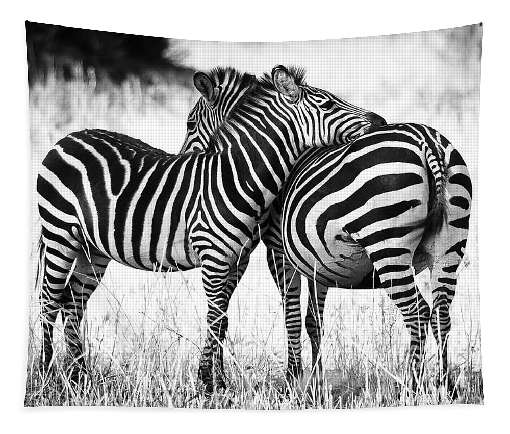 3scape Tapestry featuring the photograph Zebra Love by Adam Romanowicz