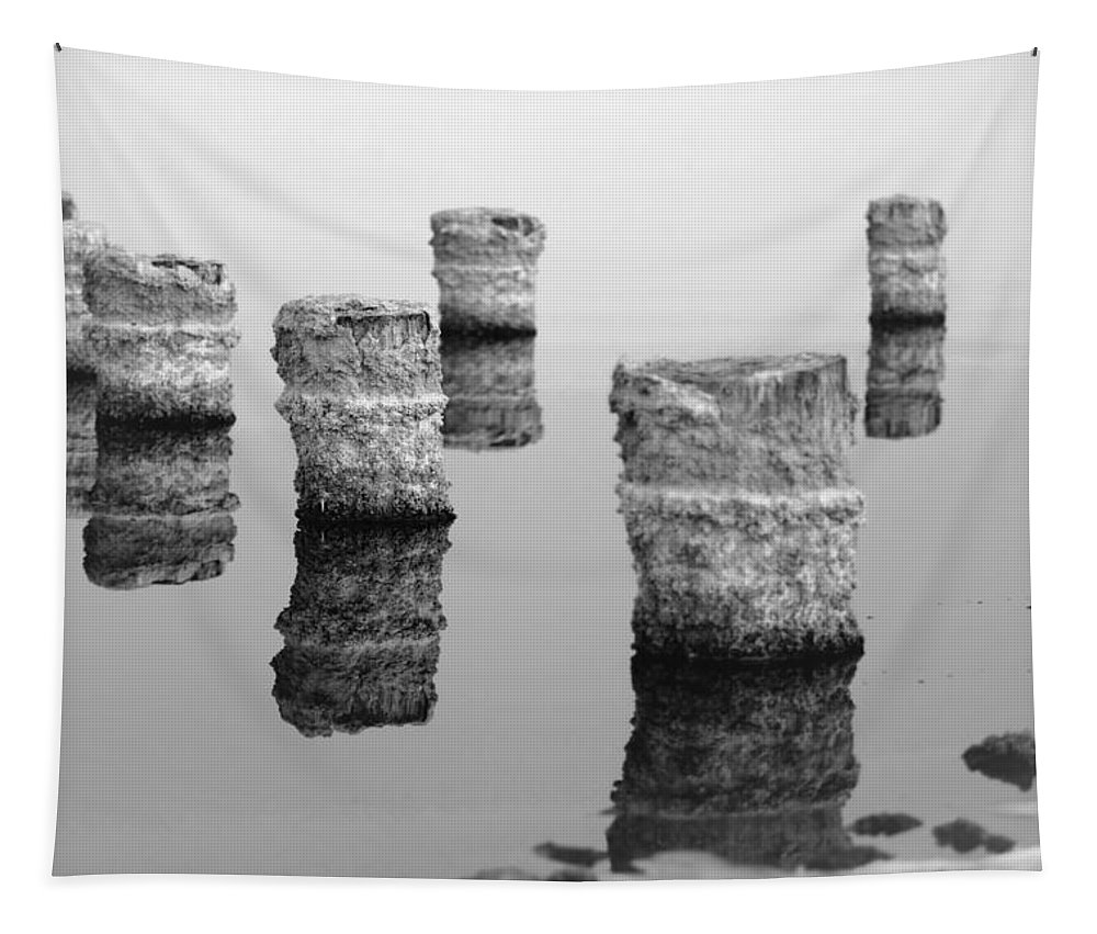 Salton Sea Tapestry featuring the photograph Zed Black And White by Scott Campbell