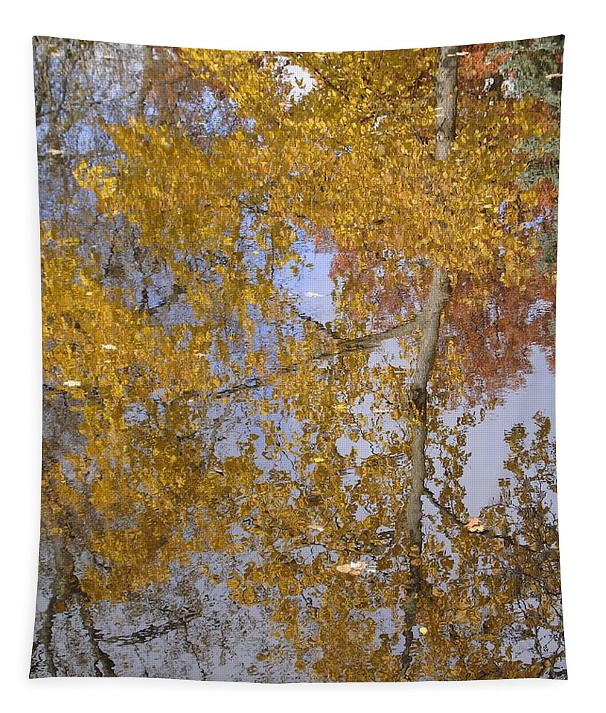 Fall Tapestry featuring the photograph Reflecting Cedar by Joseph Yarbrough