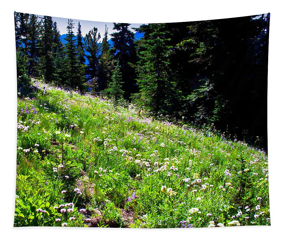 Mount Rainier Tapestry featuring the photograph Alpine Meadow Vii At Mount Rainier by David Patterson
