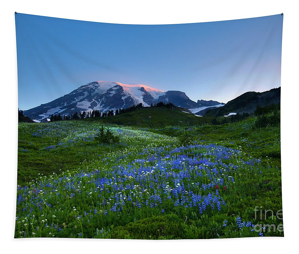 Wildflowers Tapestry featuring the photograph First Light by Mike Dawson
