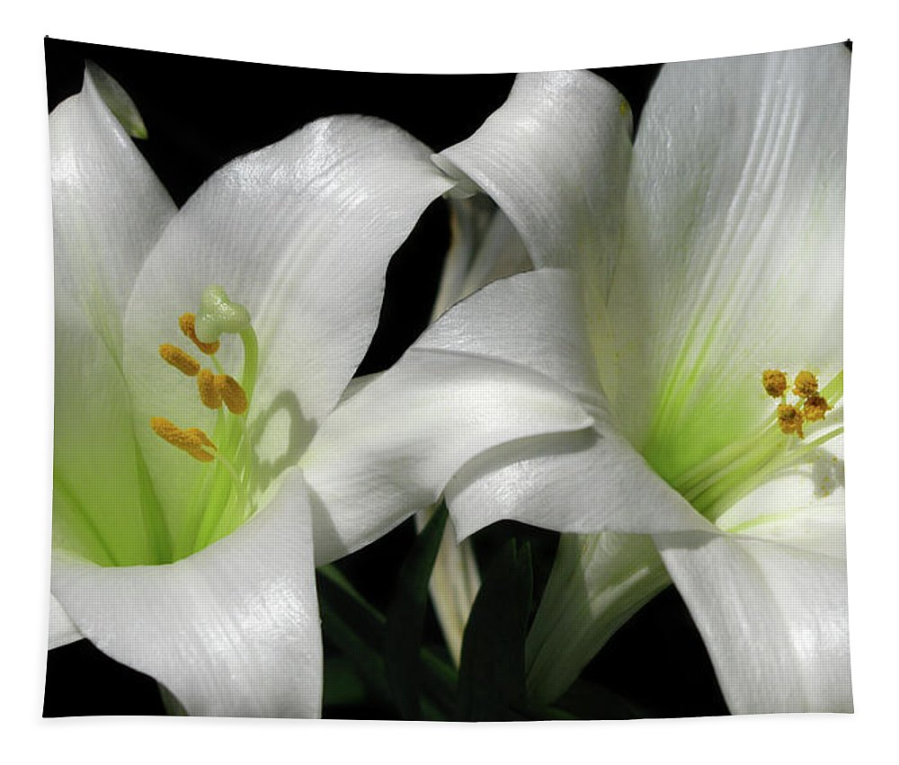 Lily Tapestry featuring the photograph Lilies by Mary Lane