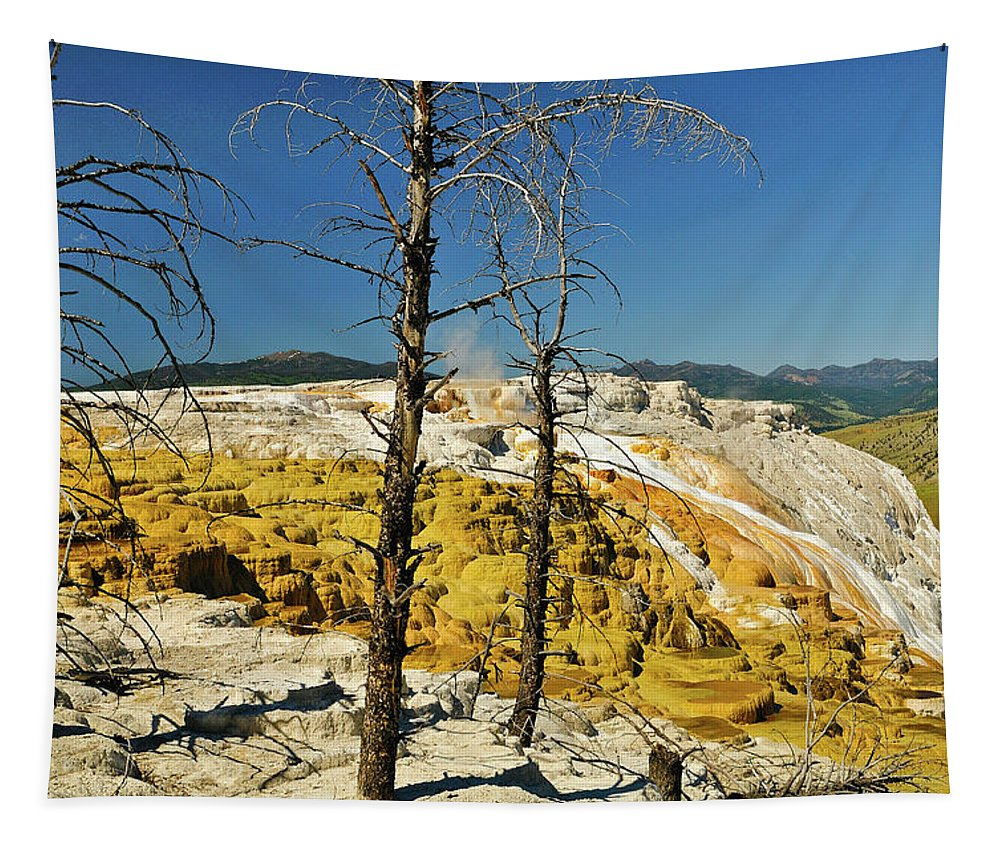 Mammoth Hot Springs Tapestry featuring the photograph Mammoth Upper Terrace by Greg Norrell