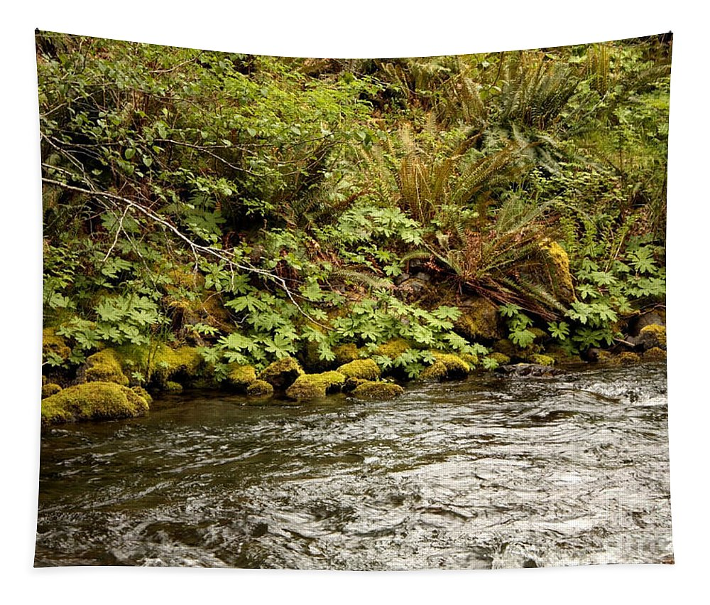 Washington State Tapestry featuring the photograph Mossy Riverbank by Carol Groenen