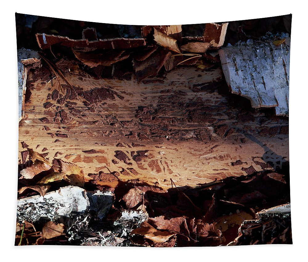 Autumn Tapestry featuring the photograph Natural Carvings by Jouko Lehto