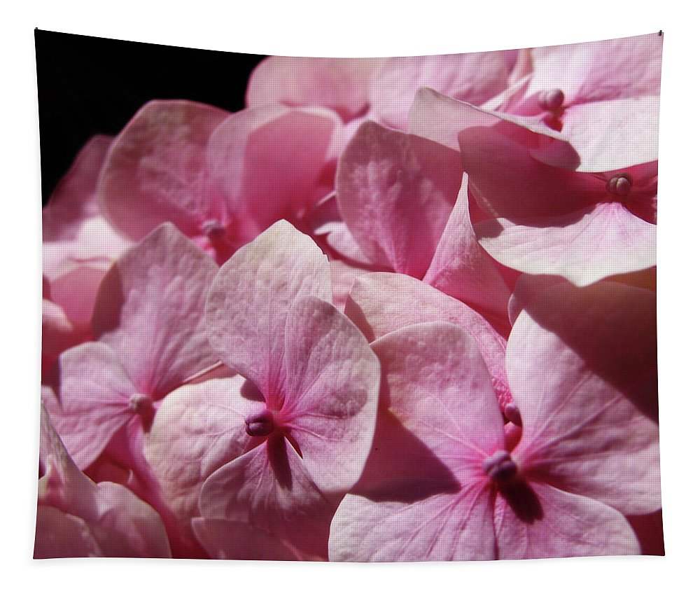 Hydrangea Tapestry featuring the photograph Pink Hydrangea by Mary Lane