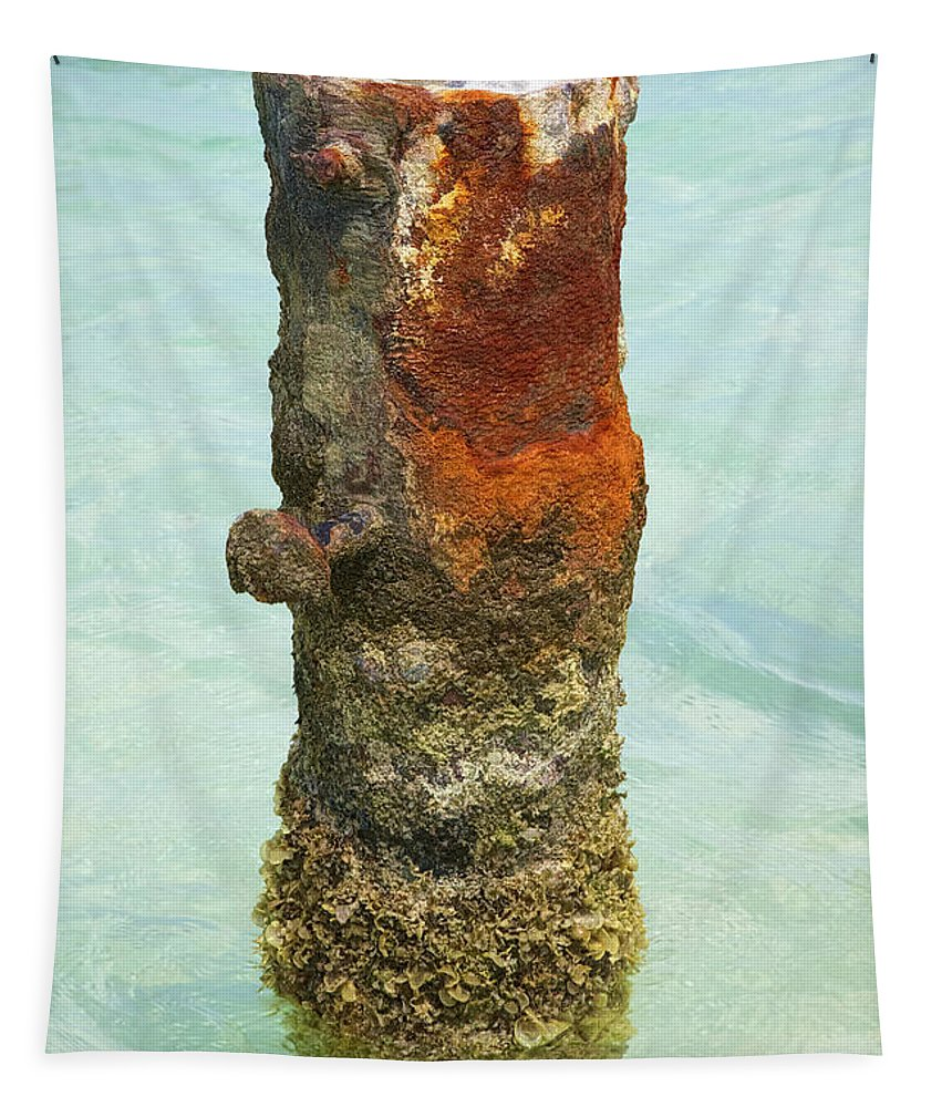 Aruba Tapestry featuring the photograph Rusted Dock Pier Of The Caribbean Vii by David Letts