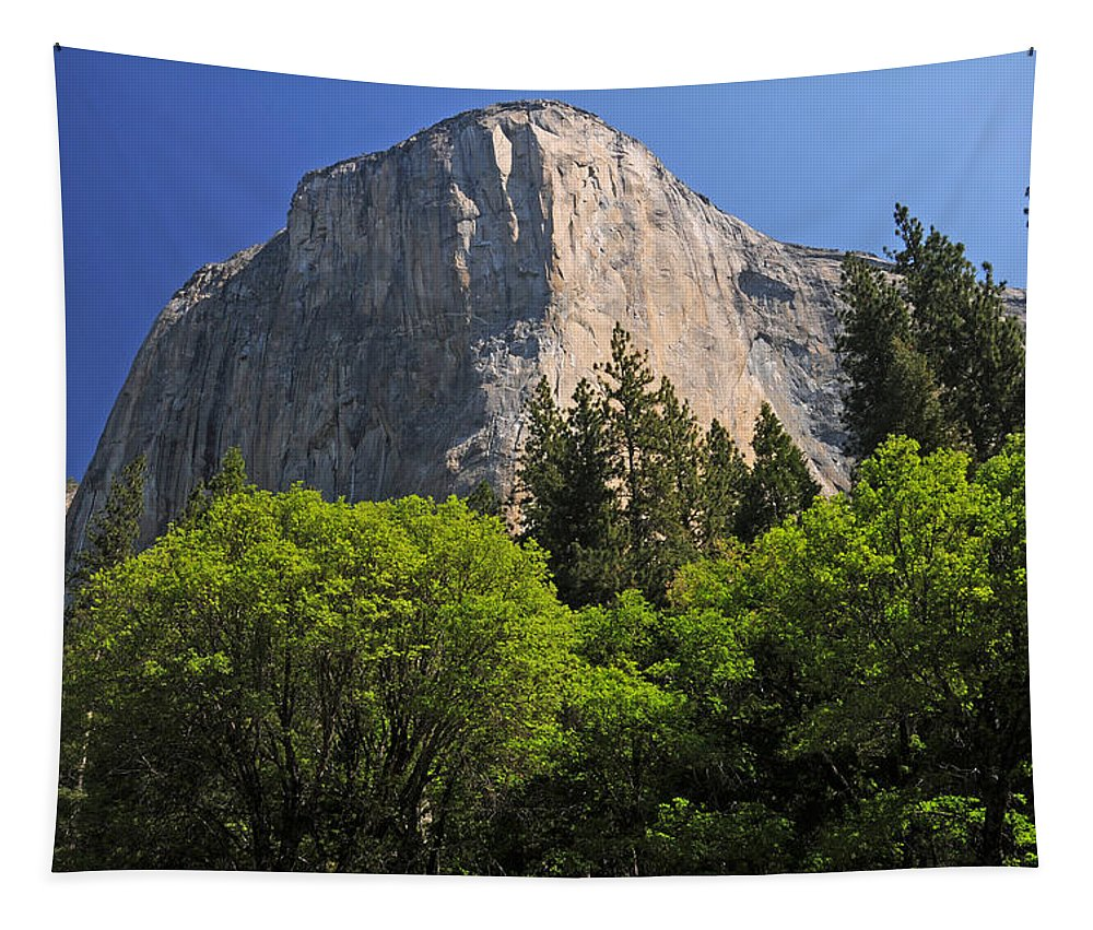El Capitan Tapestry featuring the photograph Spring Views Of El Capitan by Lynn Bauer