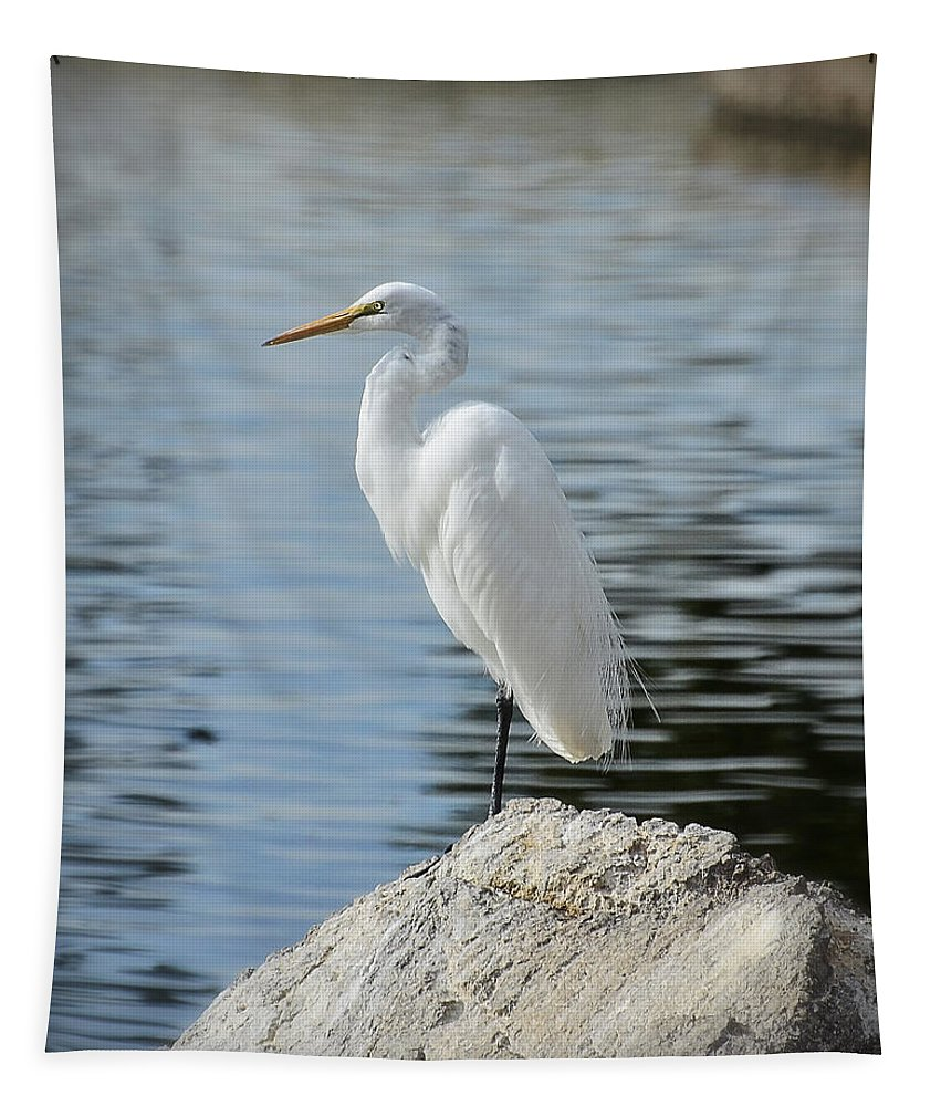 Great White Egret Tapestry featuring the photograph Stand Tall by Saija Lehtonen