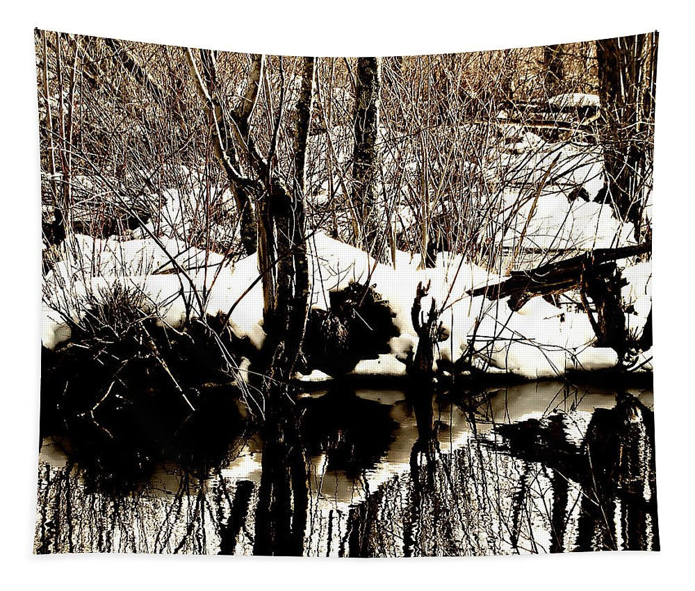 Landscape Tapestry featuring the photograph Swamp by Mary Lane