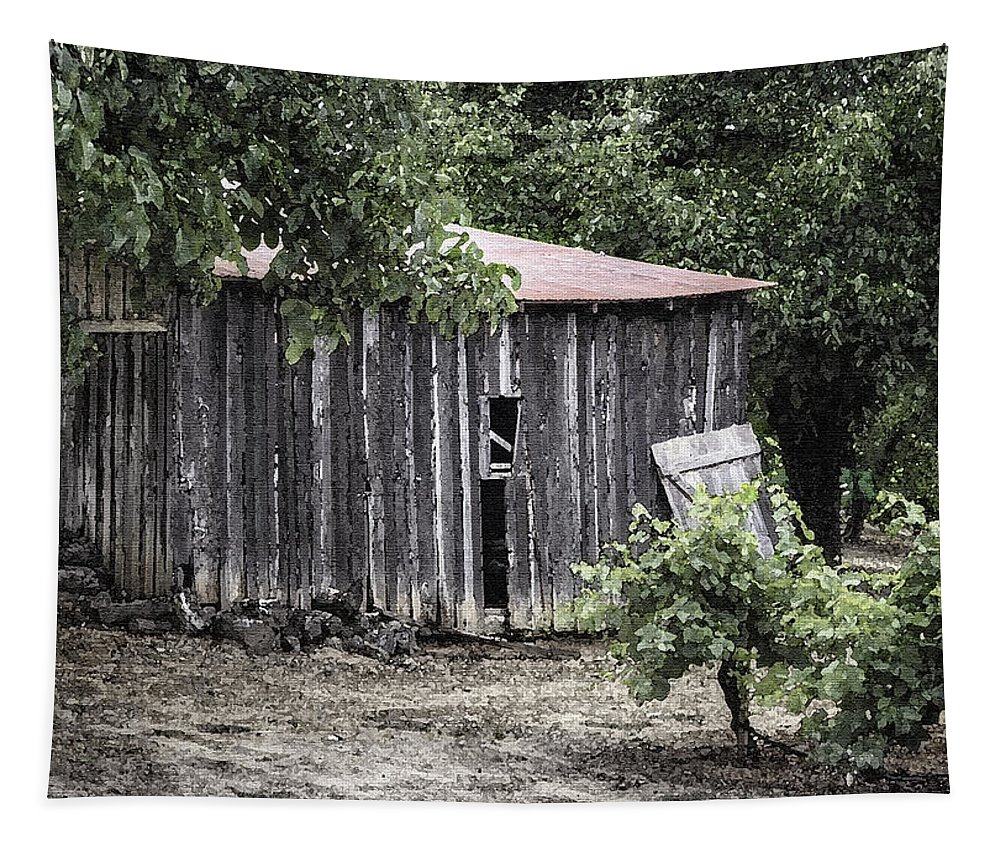 Barn Tapestry featuring the photograph Watercolor Barn by Joan Carroll