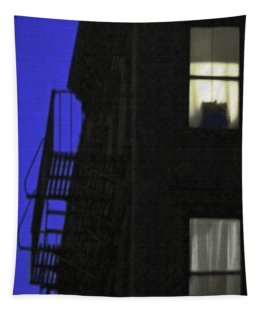 New York City Tapestry featuring the photograph Manhattan After Dark by Madeline Ellis