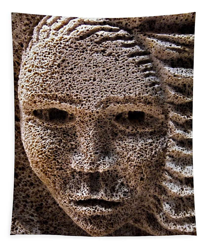 Stone Tapestry featuring the photograph Watching You ... by Juergen Weiss