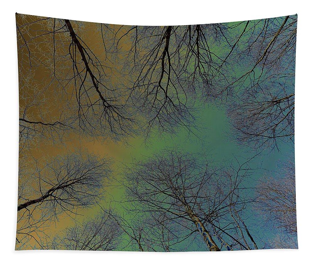 Art Tapestry featuring the digital art Epping Forest Art by David Pyatt