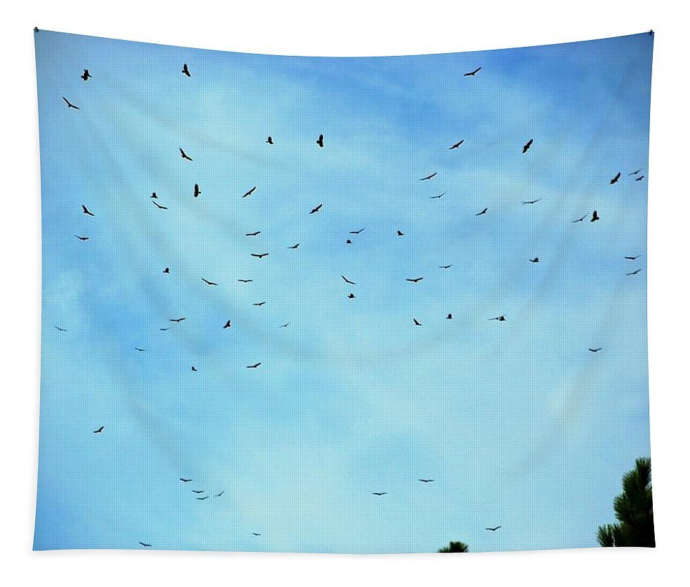 Turkey Vulture Tapestry featuring the photograph 74 Turkey Vultures by Eric Tressler