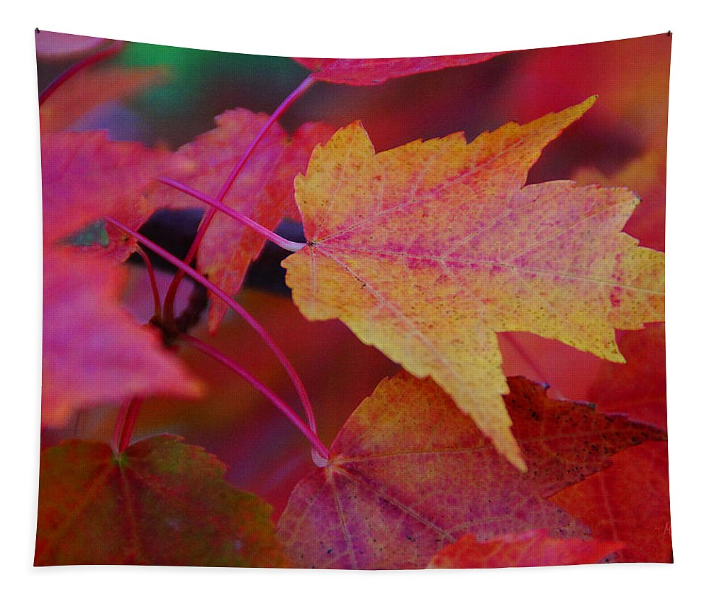 Yellow Tapestry featuring the photograph A Bit Of Yellow In A Sea Of Red by Mick Anderson