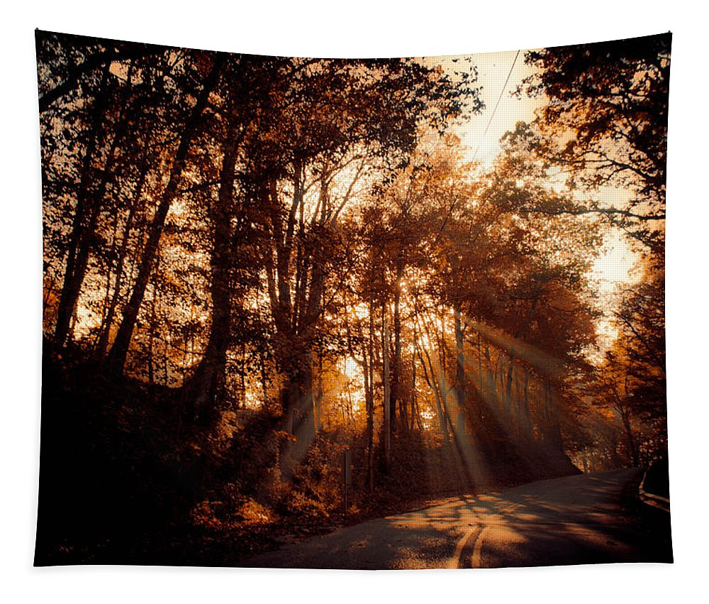 Ray Tapestry featuring the photograph A New Dawn by Trish Tritz