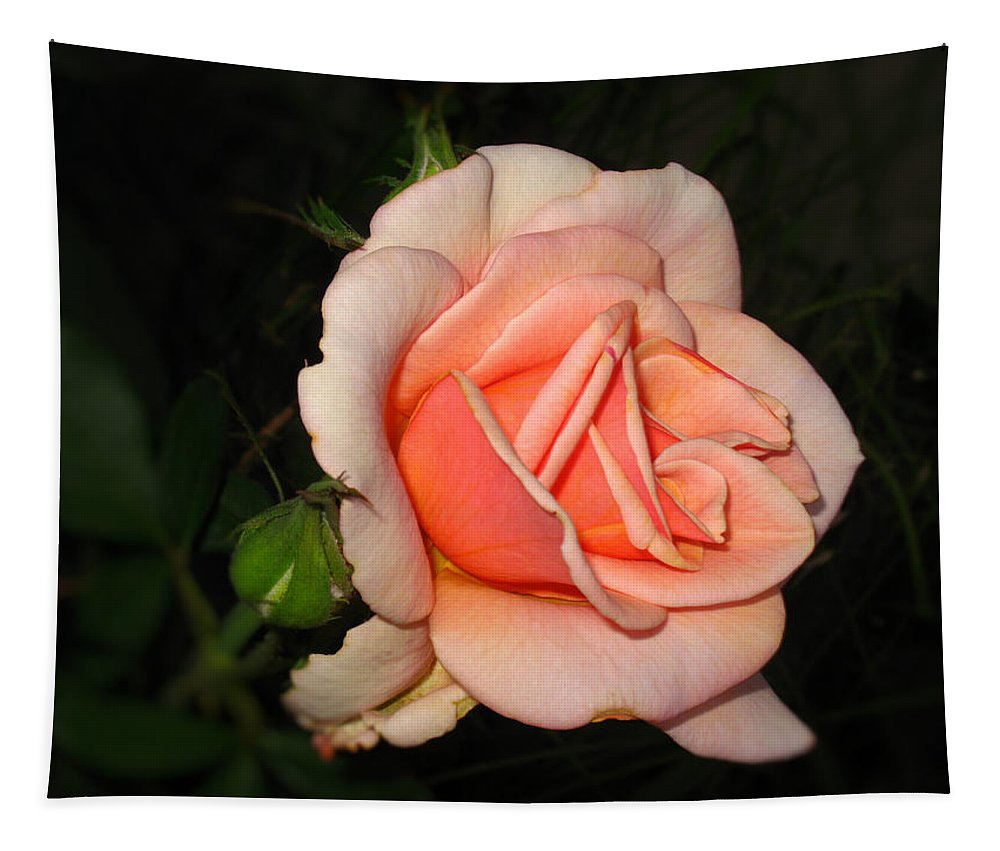 Rose Tapestry featuring the photograph A Peach Of A Rose by Joyce Dickens