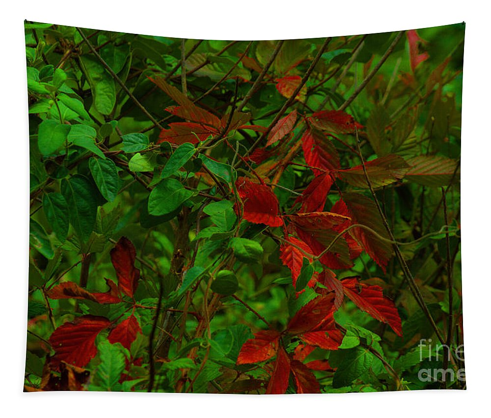 Plants Tapestry featuring the photograph A Touch Of Christmas In Nature by Donna Brown