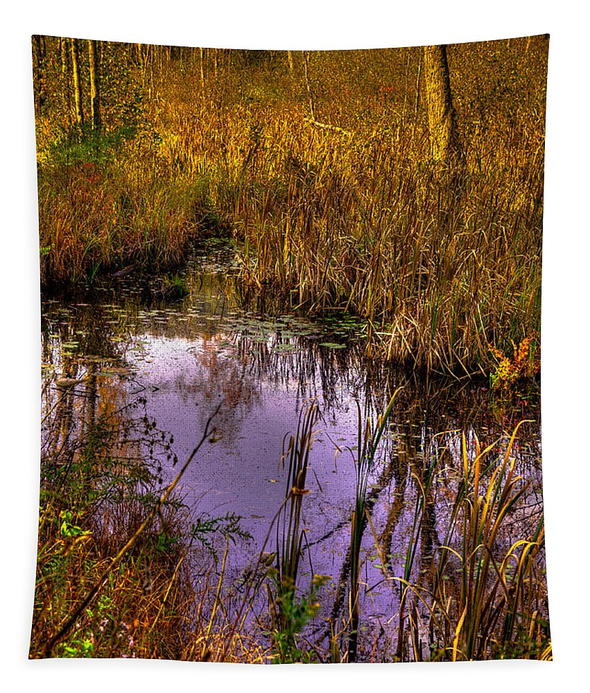 Adirondack's Tapestry featuring the photograph Adirondack Pond IIi by David Patterson