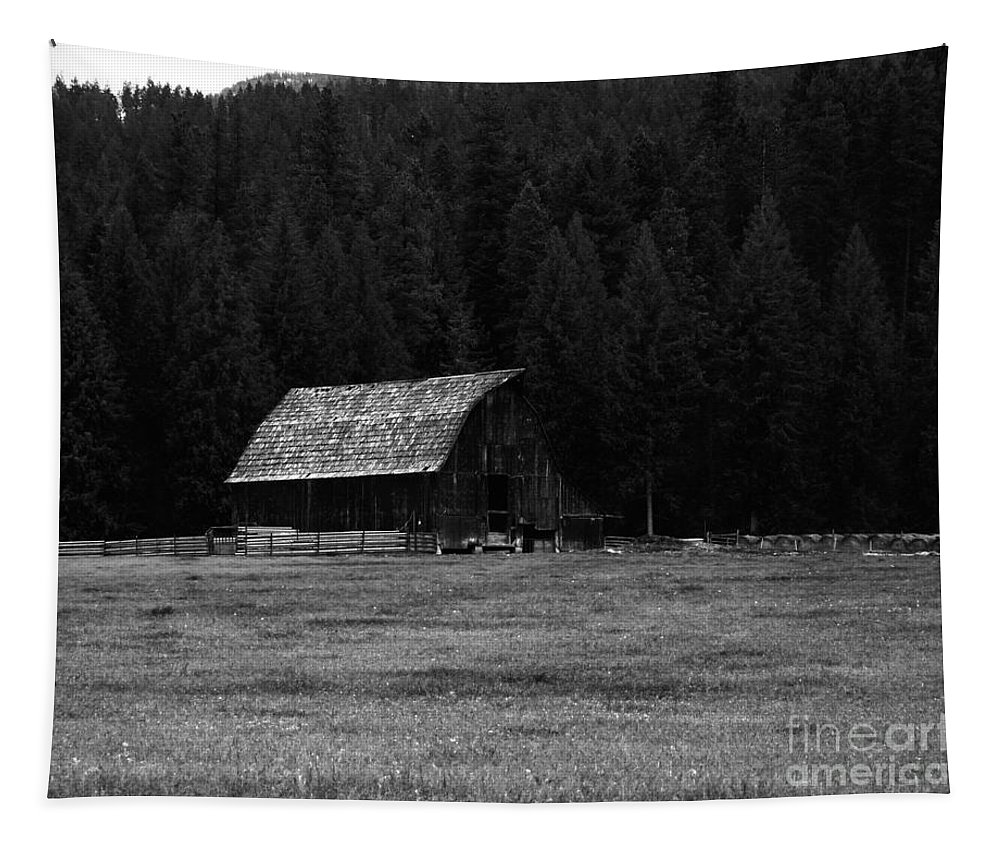 Barns Tapestry featuring the photograph An Old Barn In Black And White by Jeff Swan