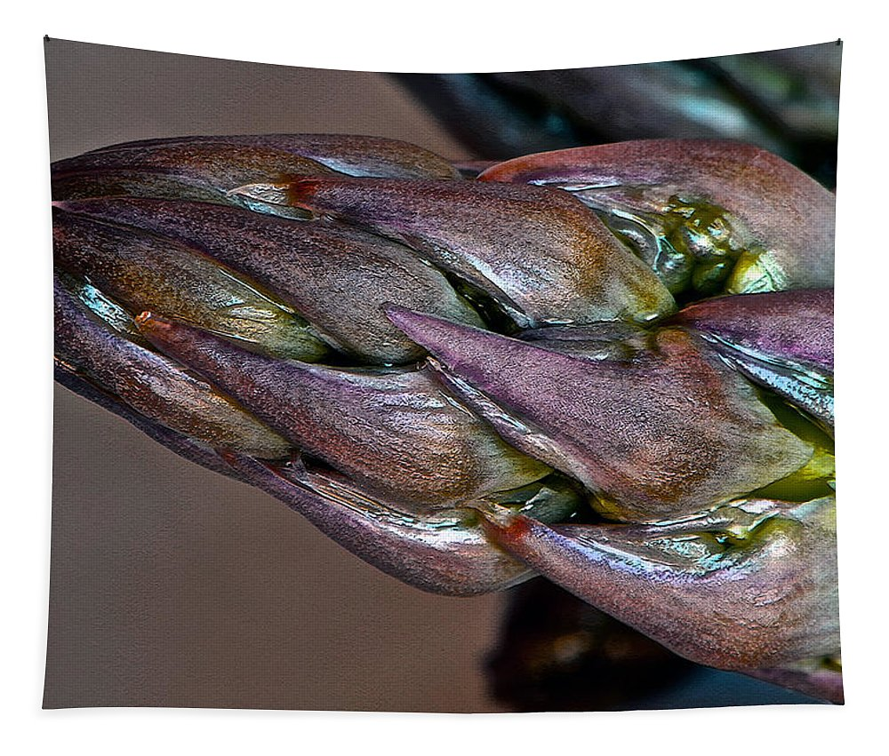 Asparagus Tapestry featuring the photograph asparagus II by Bill Owen