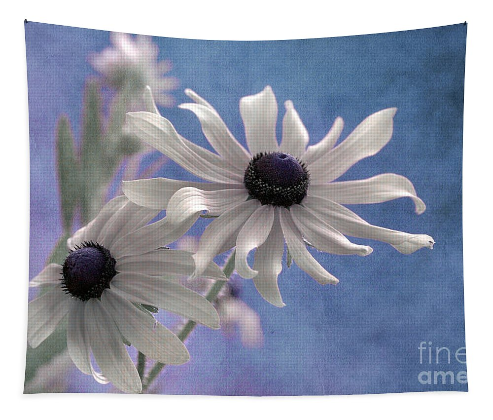 black Eyed Susan Tapestry featuring the photograph Attachement - S09at01 by Variance Collections