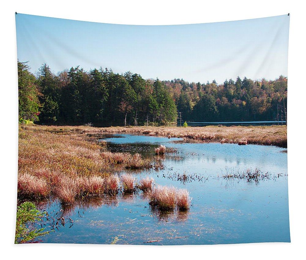 The Adirondacks Tapestry featuring the photograph Adirondack Lake 2 by David Patterson