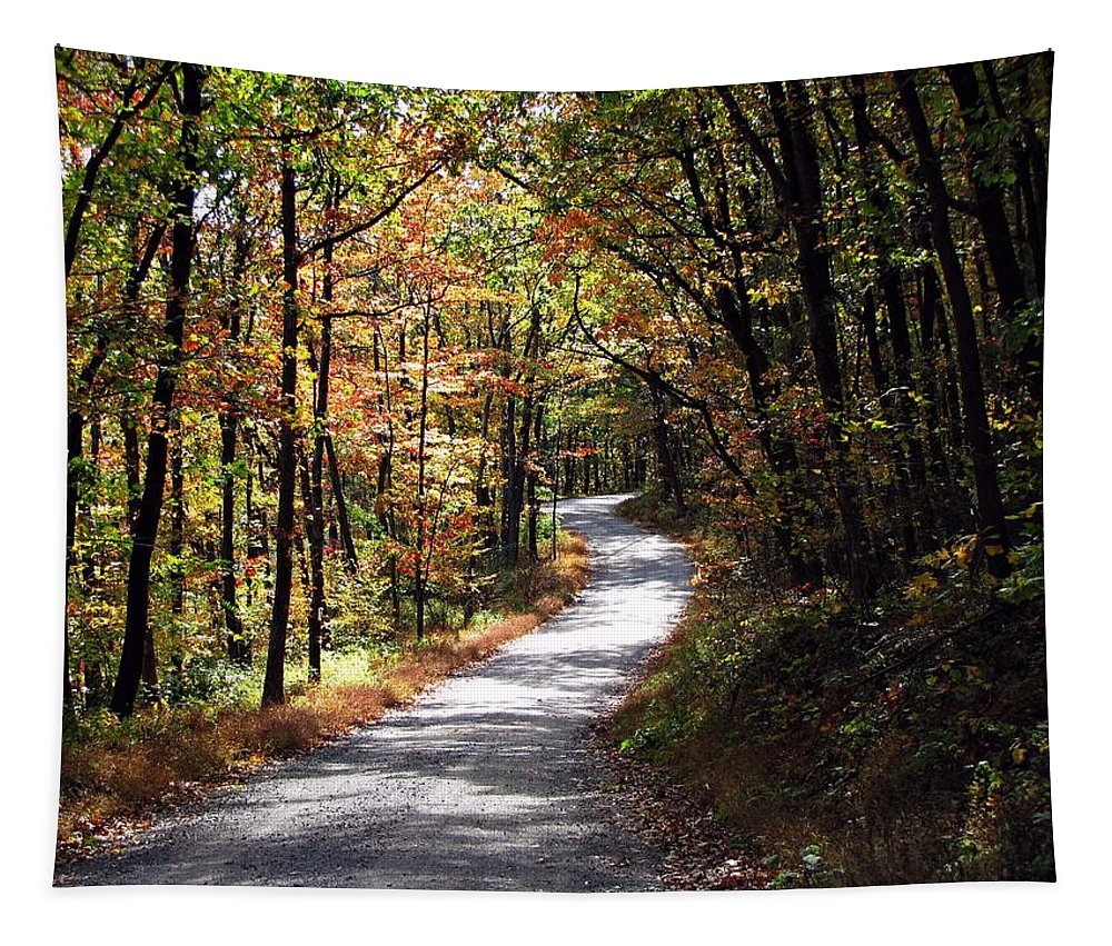 Autumn Tapestry featuring the photograph Autumn Country Lane by David Dehner