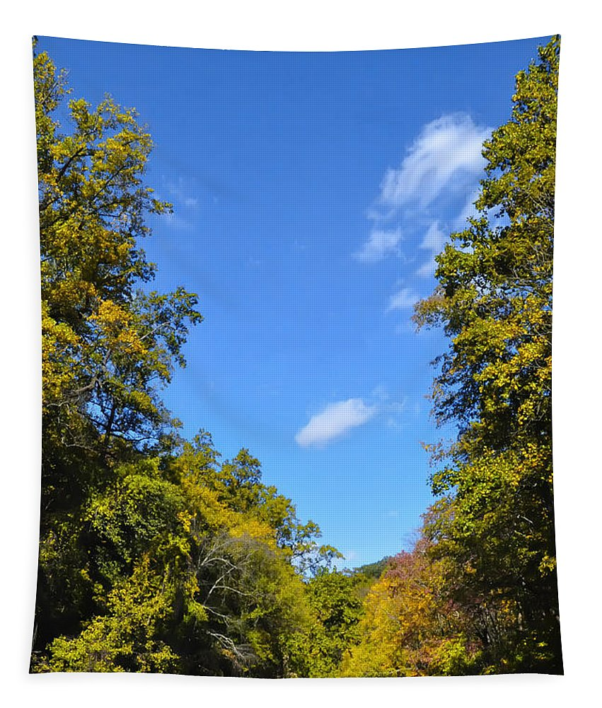 Autumn Tapestry featuring the photograph Autumn In Pennsylvania by Bill Cannon