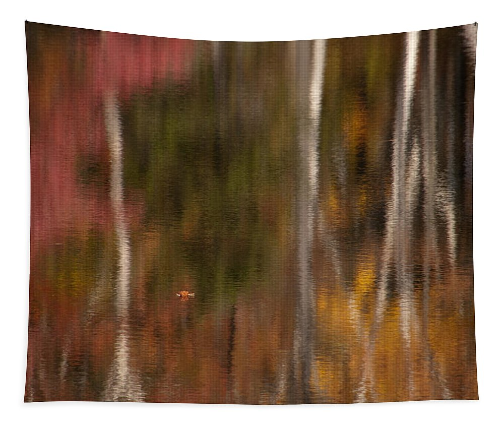 Water Tapestry featuring the photograph Autumn In Water Color by Mike Martin