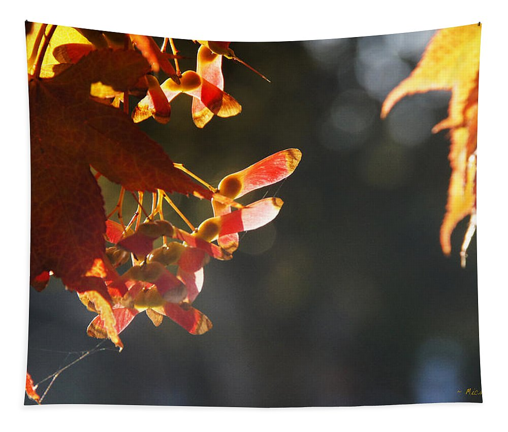Autumn Tapestry featuring the photograph Autumn Maple by Mick Anderson