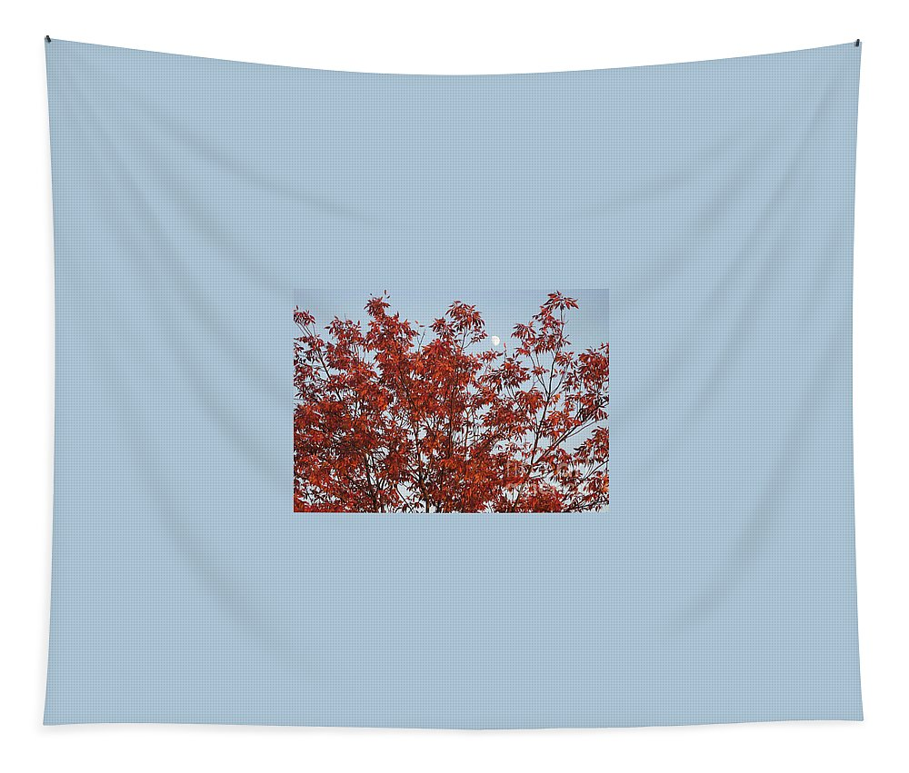 Red Brown Leaves Tapestry featuring the photograph Autumn Moon by Sonali Gangane