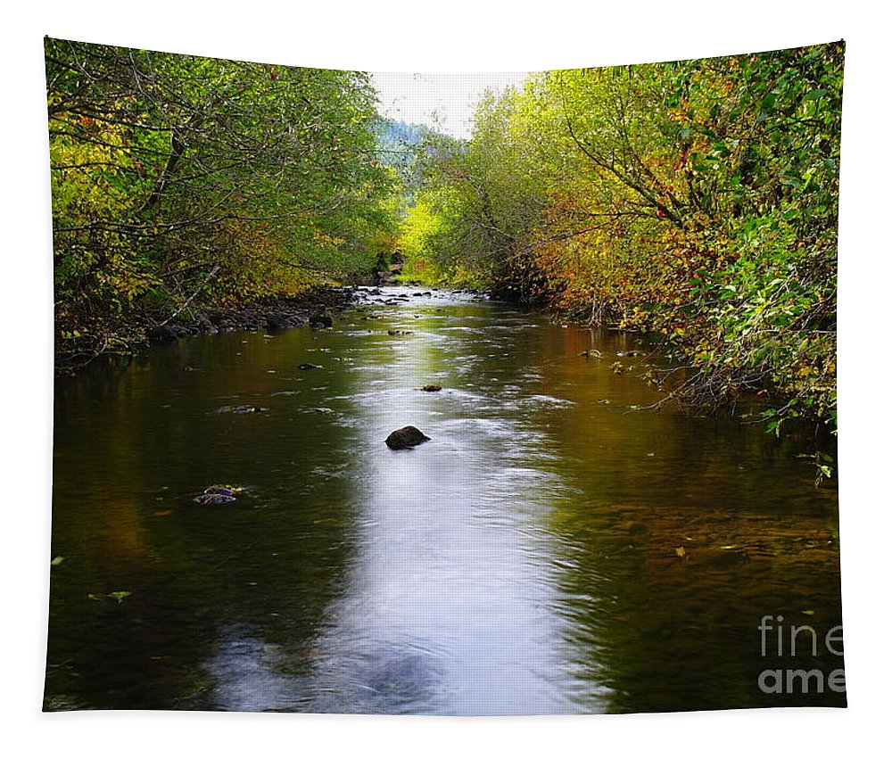 Autumn Tapestry featuring the photograph Autumn On Satus Creek by Jeff Swan